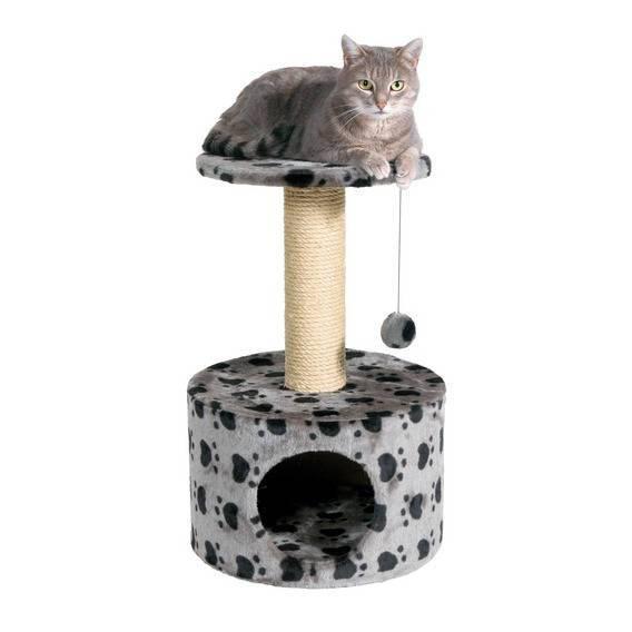 Vendita accessori per gatti torino aqva for Tartarughiere e accessori